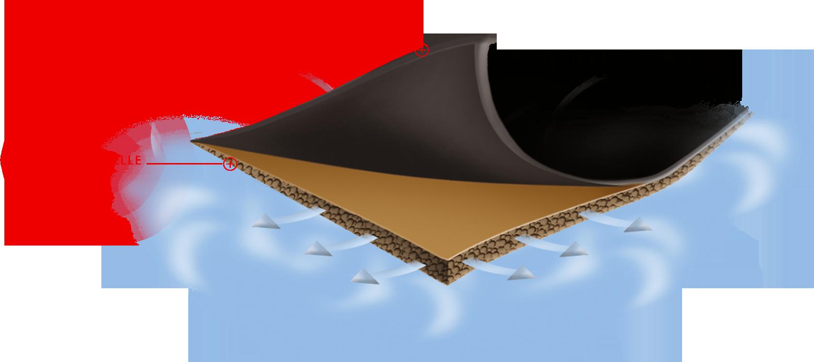 micropelle-sezione